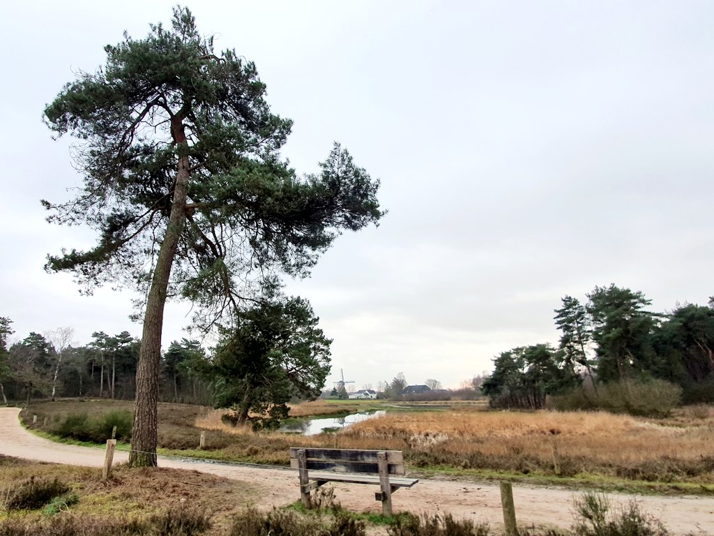 rt-wolfswandelplan-landgoed-hernen-wandelbankjes-https-t-co-vffskbhlof