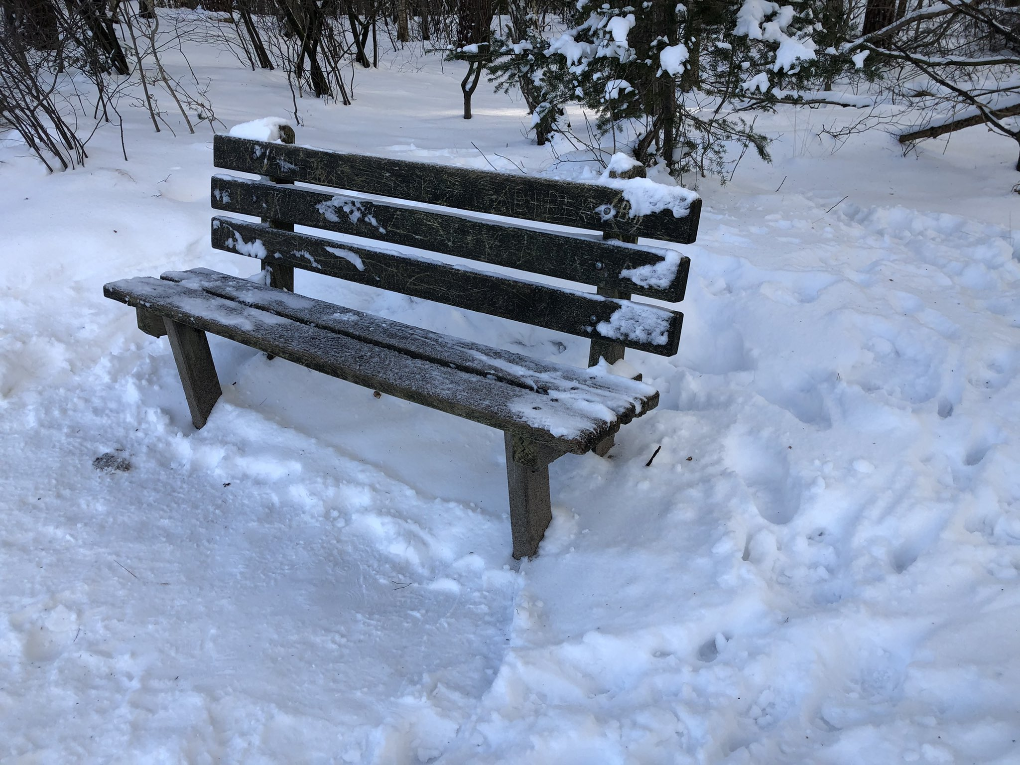 rt-gerritjhkuiper-winter-wandelbankjes-in-eerde-bij-de-meertjes-https-t-co-v82s3nuema
