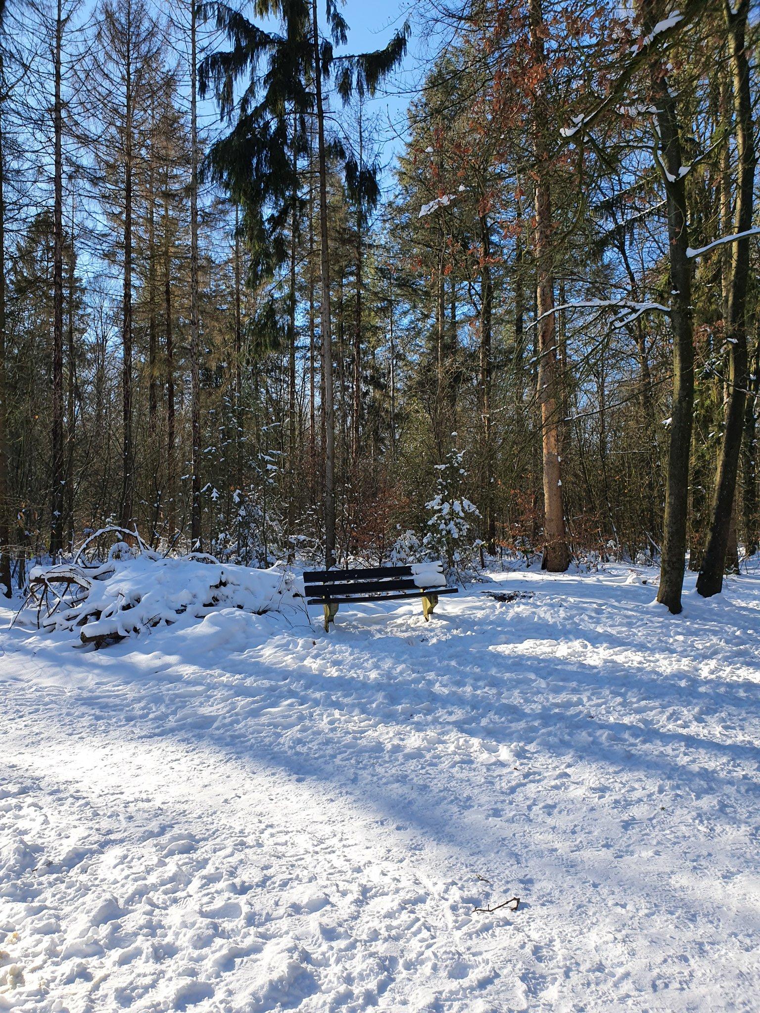 rt-simmajalis-mooie-route-ook-voor-de-slee-rijssen-wandelbankjes-bankjes-genoeg-sneeuwpret-https-t-co-7lardsfa72