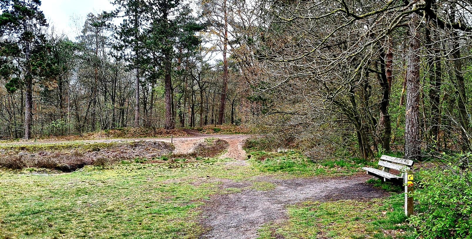 rt-natuurlopend-wandelbankjes-in-het-mooiste-bos-van-emmen-het-noordbargerbos-drenthe-https-t-co-jjqfpvewfl