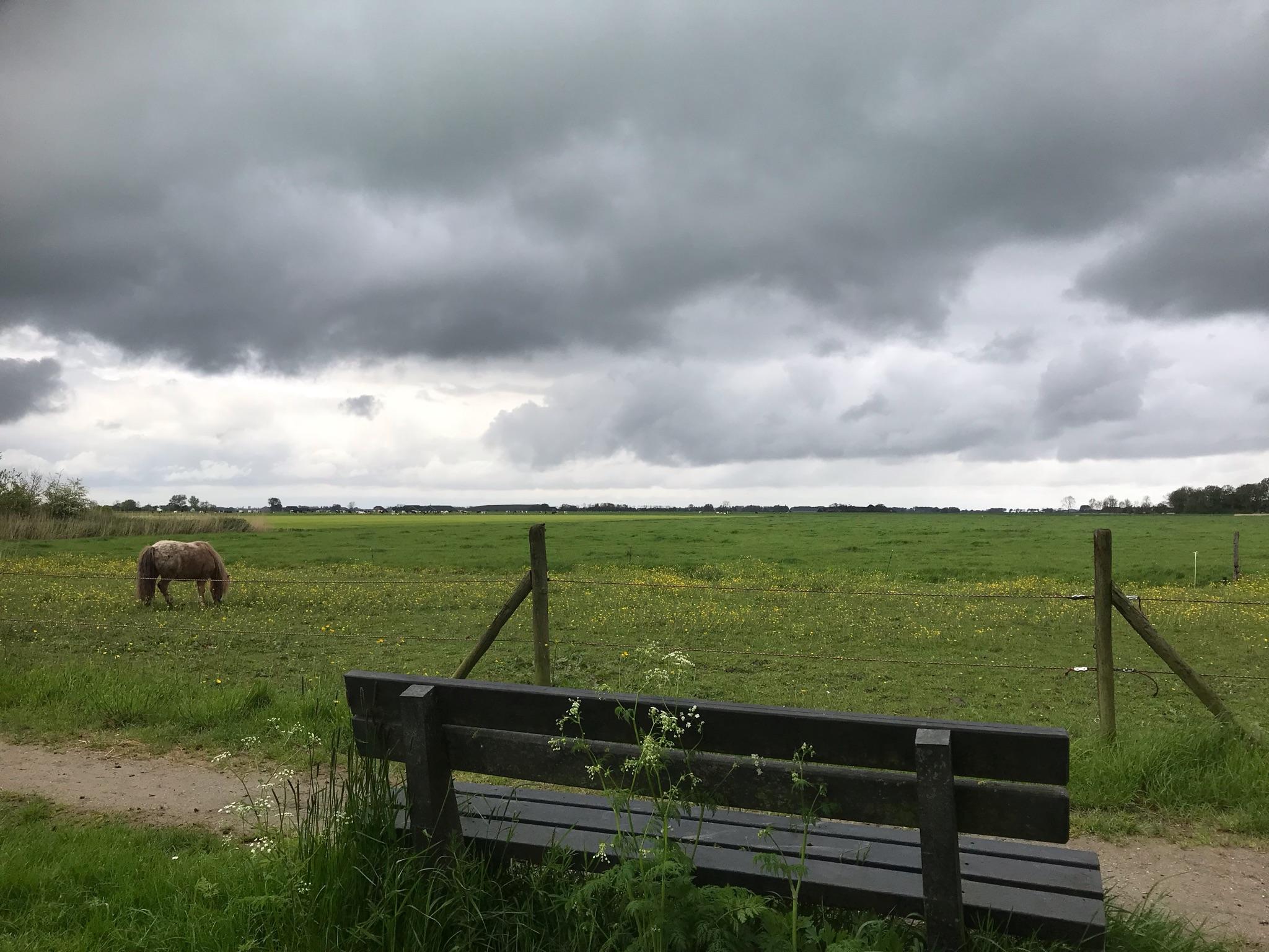 rt-gerritriezebos-uitzicht-groninger-landschap-bij-kantens-wandelbankjes-https-t-co-esobzwrrzi