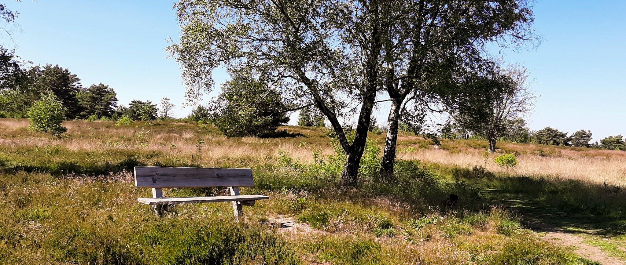 rt-evelienengelage-genieten-op-het-wandelbankjes-op-het-houtdorperspeulderveld-https-t-co-faffnowi3c