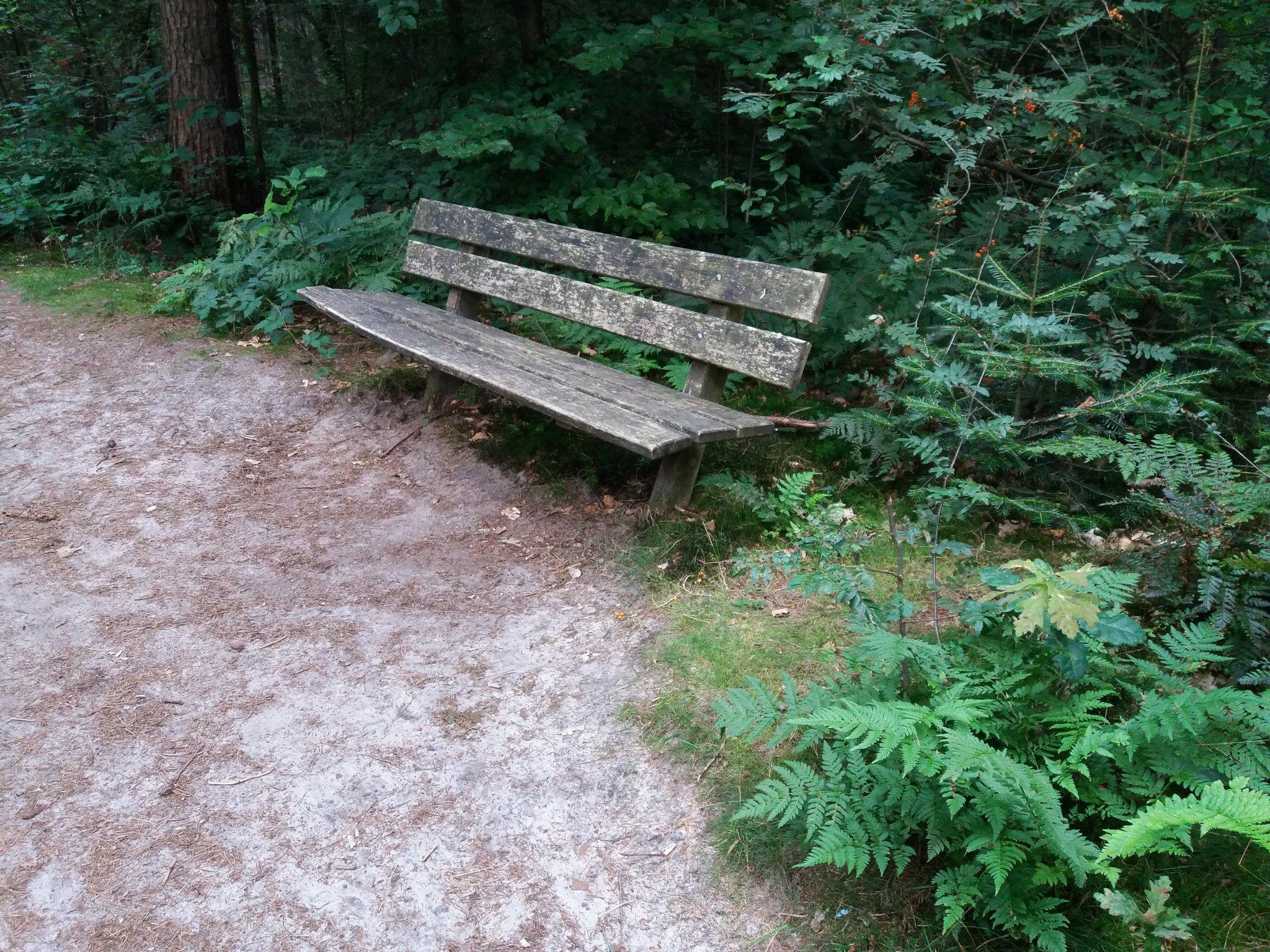 rt-wandelenmetwar-wandelbankjes-poolshoogte-odoorn-https-t-co-tpilginxab