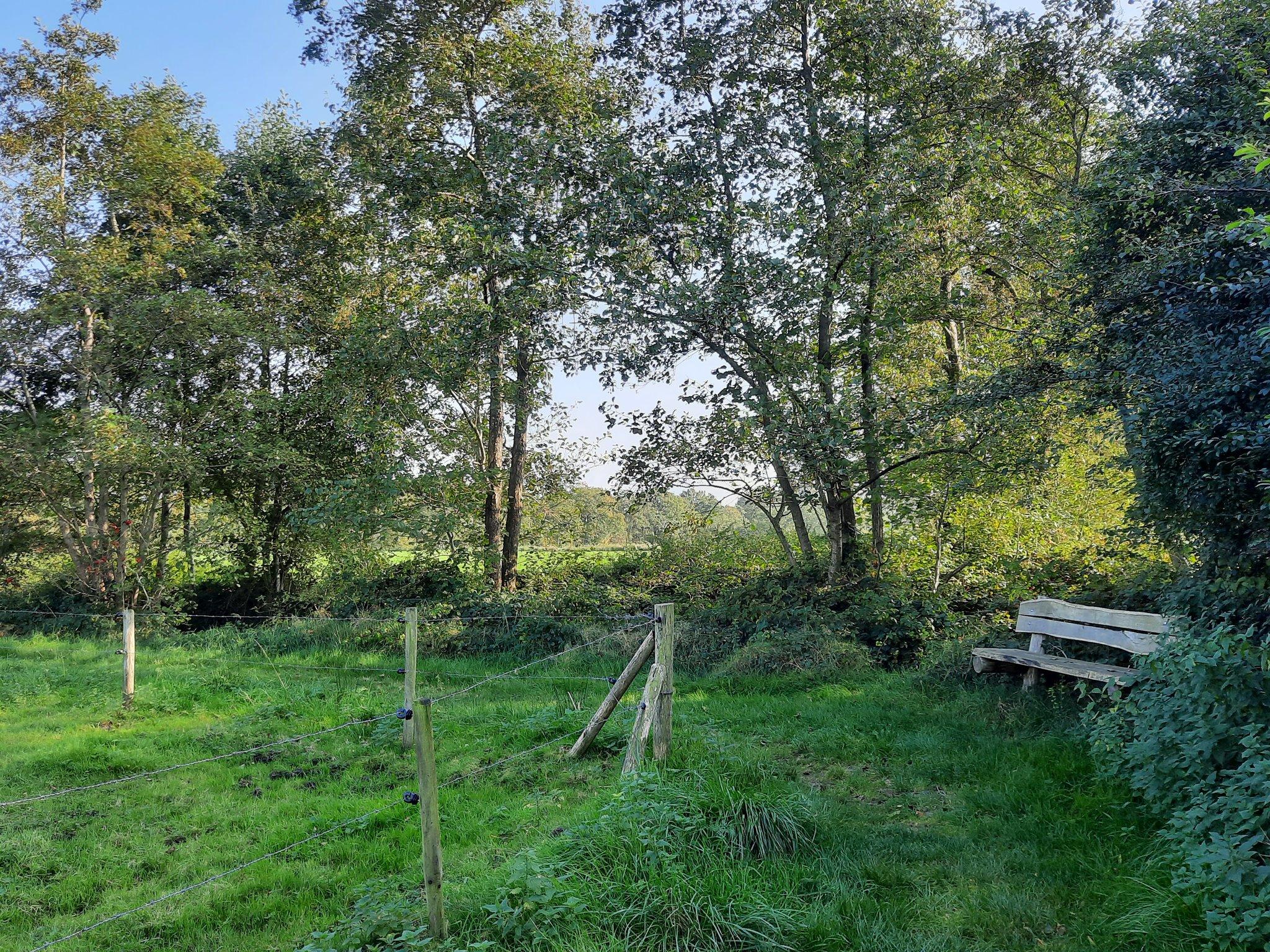 rt-walburgism-wandelbankjes-gr_landschap-nabij-steenhuis-niebert-westerkwartier-https-t-co-fwkibs6oem